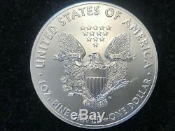LOT OF 10 2019 Silver American Eagle 1 Oz. 999