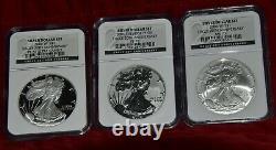 2006 Us Mint Argent American Eagle 20e Anniversaire Set All Ngc Graded 70