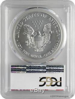 2019 $ 1 American Silver Eagle Étiquette Pcg Ms70 First Strike Eagle Lot De 10